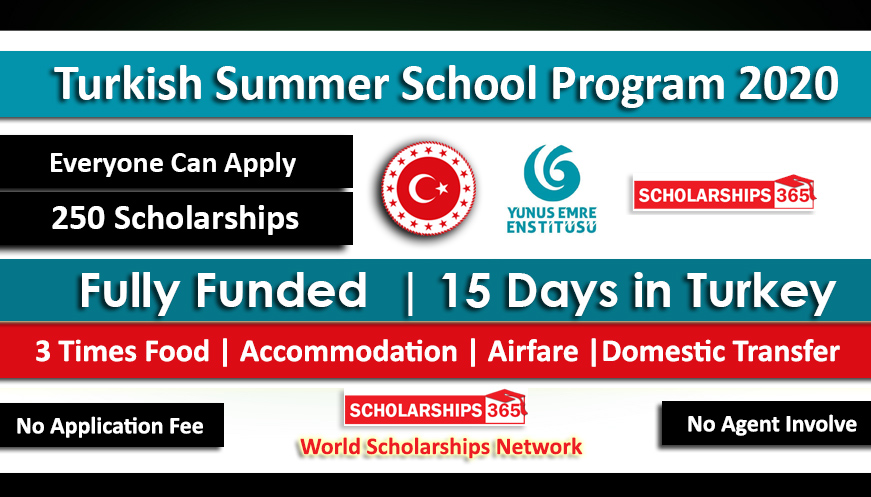 Turkish Summer School Program 2020 Fully Funded - Yunus Emre Institute Turkey