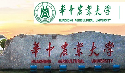 Huazhong Agricultural University Scholarship 2020 - MS - PhD