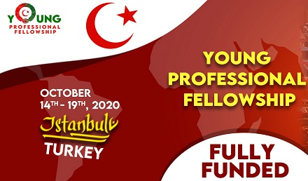 Young Professional Fellowship 2020 - Fully Funded in Turkey - Fellowship