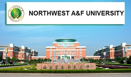 Northwest A&F University CSC Scholarships 2019
