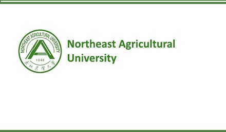 Northeast Agricultural University CSC Scholarship 2021