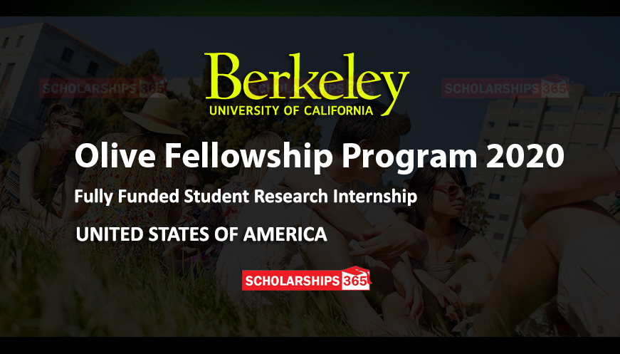 UC Berkeley Olive Fellowship Program 2020 in USA - Fully Funded